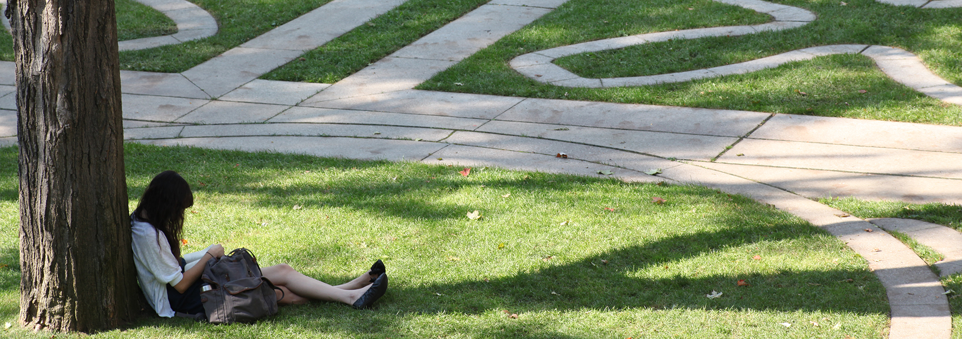 Student sitting under a tree in the Trinity Quad