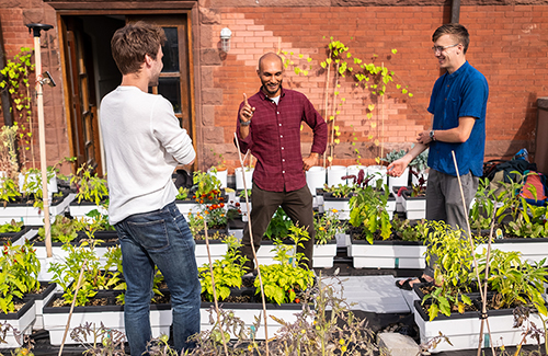 Students on Trinity's Rooftop Garden